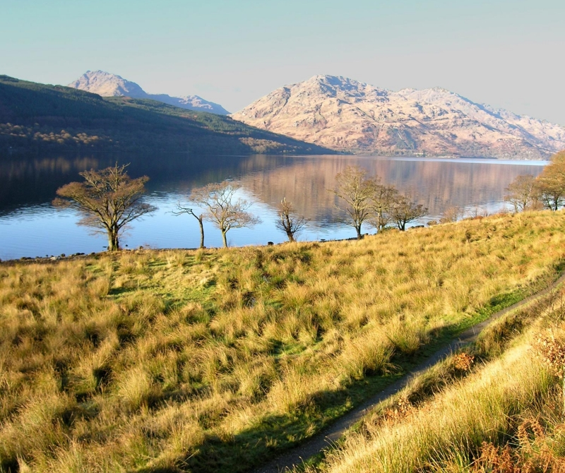An array of wildlife and nature is to be found whilst staying at The Inversnaid Hotel
